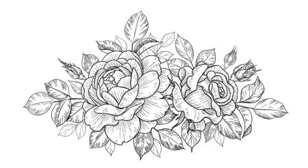 Hand drawn rose flower, buds and leaves bunch isolated on white. Vector monochrome elegant horizontal floral composition in vintage style, t-shirt, tattoo design, coloring page, wedding decoration. Vector Illustration