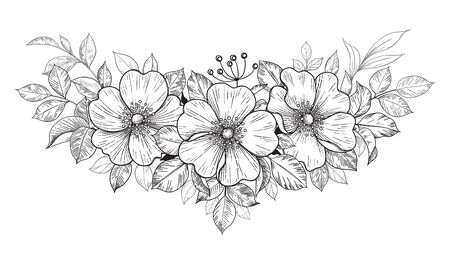 Hand drawn dog-rose bunch with flowers and leaves isolated on white. Vector line art monochrome elegant floral composition in vintage style, tattoo design, coloring page, wedding decoration.