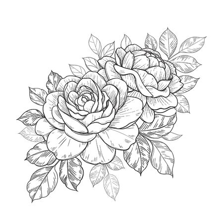 Hand drawn rose flowers and leaves bunch isolated on white. Vector monochrome elegant floral composition in vintage style, t-shirt, tattoo design, coloring page, wedding decoration.