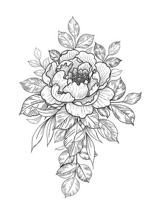 Hand drawn flower and leaves bunch isolated on white. Vector line art monochrome elegant floral composition in vintage style, t-shirt, tattoo design, coloring page, wedding decoration.