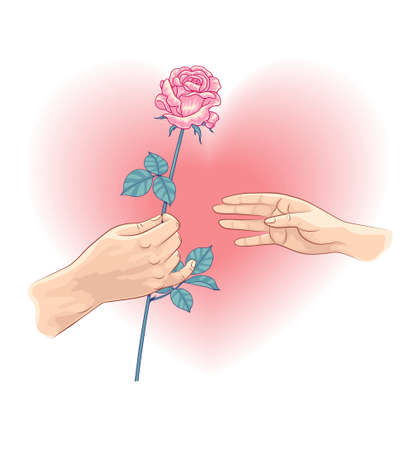 Male hand holding pink rose and female hand on the heart shaped background. Man gives a woman a flower.