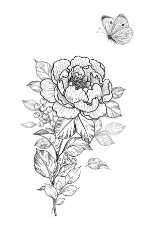 Hand drawn peony and butterfly isolated on blank background. Black and white single flower and flying moth. Vector monochrome elegant floral composition in vintage style, tattoo design, template.