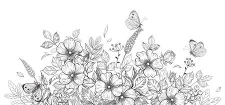 Hand drawn wildflowers, dog-rose and butterflies on blank background. Black and white flowers and insects. Vector monochrome elegant floral composition in vintage style, template wedding decoration.