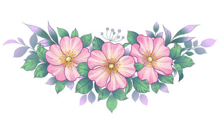 Hand drawn dog-rose bunch with pink flowers and green leaves isolated on white. Vector line art elegant floral arrangement in vintage style.