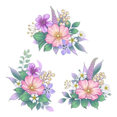 Hand drawn bunches with pink Dog-Rose flowers and small wildflowers isolated on white. Vector elegant floral arrangement in vintage style, tattoo design, wedding decoration.