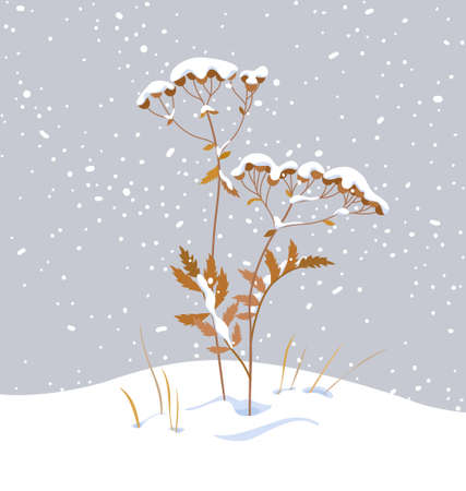 Winter snow covered meadow plants. Wild herb under the snow on gray background. Winter scenery fragment with simple dried grass in snowfall vector flat illustration. Stock Illustratie