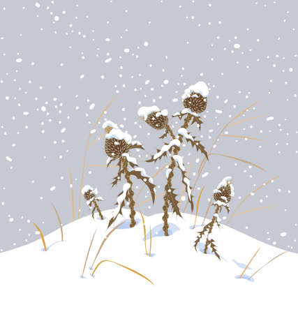 Winter snow covered meadow plants. Dry thistle with prickly stem and leaves under the snow on gray background. Winter scenery fragment with simple dried herbs in snowfall vector flat illustration.