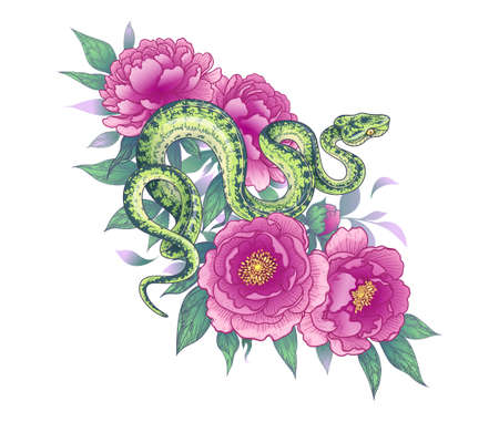 Hand drawn twisted snake among peony flowers isolated on white. Vector spotted green garden boa and pink peonies. Floral illustration in vintage style, t-shirt design, tattoo art. Stock Illustratie