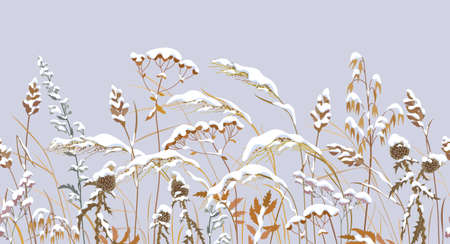 Seamless horizontal border with winter snow covered meadow plants. Wild herbs, cereals under the snow on gray background. Winter scenery pattern with simple dried grass in row vector flat illustration
