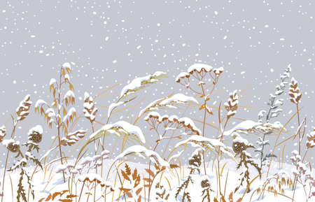 Seamless horizontal border with winter snow covered meadow plants. Wild herbs and cereals under snow on gray background. Winter scenery pattern with simple dried grass in snowfall vector illustration.