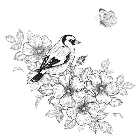 Hand drawn goldfinch sitting on Dog-Rose branch with flowers and flying butterfly. Vector monochrome elegant floral arrangement with bird in vintage style, t-shirt, tattoo design, coloring page.