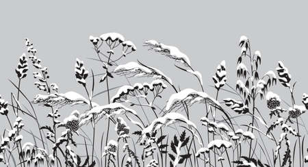 Seamless horizontal border with snow covered meadow plants. Monochrome wild herbs, cereals under the snow.
