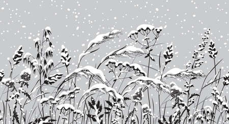 Seamless horizontal border with snowfall and snow covered meadow plants. Winter pattern with grass and wild cereals silhouette in row. Vector monochrome illustration in black, white and gray color.