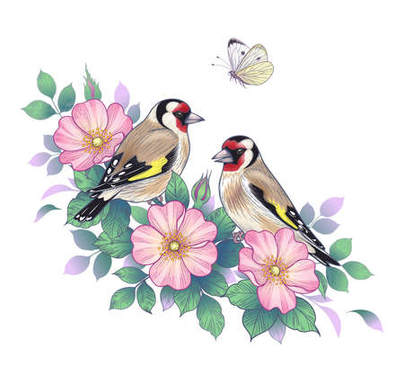 Hand drawn goldfinches sitting on Dog-Rose branch with pink flowers and flying butterfly. Vector elegant floral arrangement with birds in vintage style, t-shirt, tattoo design. Stock Illustratie