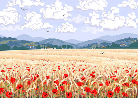 Rural scene with field of ripe wheat, red poppy flowers, hills, floating clouds and flying birds in sky. Calm summer countryside landscape vector illustration. Simple natural horizontal background.