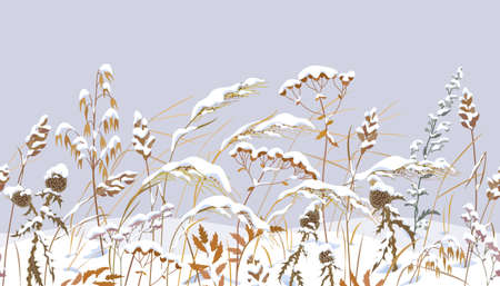 Seamless horizontal border with winter snow covered meadow plants. Wild herbs, cereals under the snow on gray background. Winter scenery pattern with simple dried grass in row vector flat illustration.