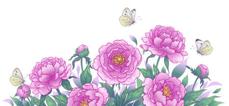 Horizontal background with blooming peonies and butterflies. Summer garden scene with pink flowers and flying moths. Vector elegant floral arrangement in vintage style, template wedding decoration. Stock Illustratie