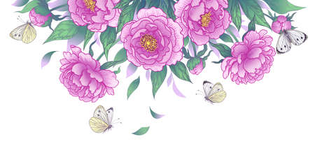 Horizontal border with blooming peonies and butterflies isolated on white. Summer garden scene with pink flowers and flying and sitting moths. Vector elegant floral arrangement in vintage style. Stock Illustratie