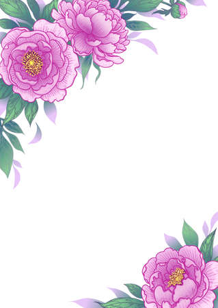Elegant border with pink flowers and green leaves. Hand drawn peony on white background. Vector floral corner arrangement in vintage style. Wedding invitation, greeting card, cover design. Stock Illustratie