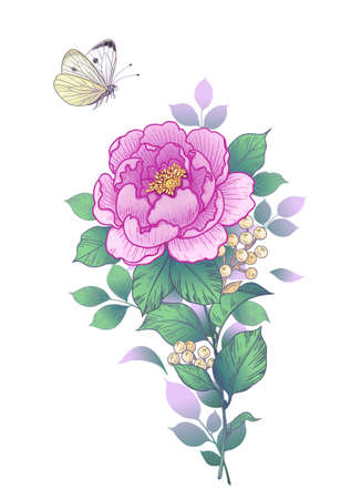 Hand drawn pink peony and butterfly isolated on white background. Single flower and flying moth. Vector elegant floral composition in vintage style, tattoo design, template. Stock Illustratie