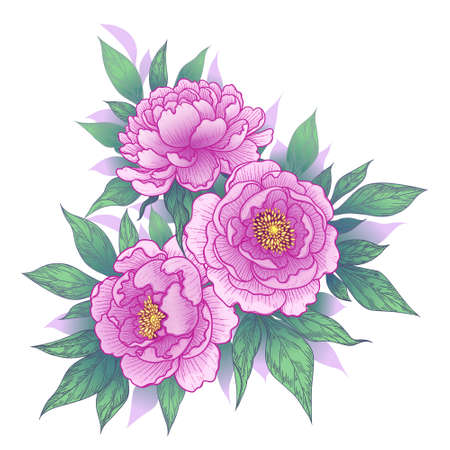 Hand drawn pink peony flowers and leaves bunch isolated on white. Vector line art elegant floral arrangement in vintage style, tattoo design, wedding decoration. Stock Illustratie