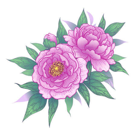 Hand drawn pink peony flowers and leaves bunch isolated on white. Vector elegant floral composition in vintage style, t-shirt, tattoo design, wedding decoration. Stock Illustratie