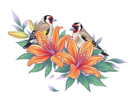 Hand drawn goldfinch couple sitting on lily branch isolated on white background. Vector monochrome elegant floral composition with birds and orange flowers in vintage style, t-shirt, tattoo design. Stock Illustratie