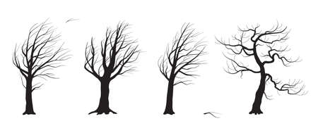 Set of old trees without leaves isolated on white background. Black tree silhouettes in wind. Landscape element design. Monochrome simple plants vector flat illustration. Stock Illustratie