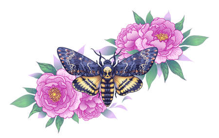 Hand drawn Acherontia Styx butterfly and pink Peony flowers on white. Colored elegant floral composition with Death's-Head Hawk Moth. Vector illustration in vintage style, tattoo art, t-shirt design.