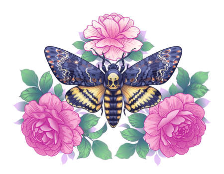 Hand drawn Acherontia Styx butterfly and Pink Rose flowers on white. Colored elegant floral composition with Death's-Head Hawk Moth. Vector illustration in vintage style, tattoo art, t-shirt design.