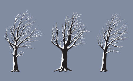 Set of old snow covered trees without leaves isolated on gray background. Winter season, windy weather, plants during a snowstorm. Monochrome simple plants under the snow vector flat illustration.