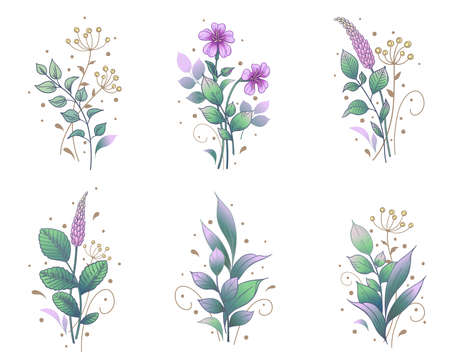 Hand drawn bunches set isolated on white background. Pink small flowers and green leaves. Vector colored elegant floral composition in vintage style, tattoo design, sticker template.