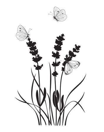Monochrome composition with butterflies and lavender flowers. Black silhouette of wildflowers, grasses, flying and sitting butterflies on white background. Vector illustration. Stock Illustratie