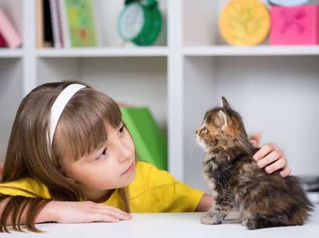 baby  pussy: Portrait of beautiful little girl with cute kitten