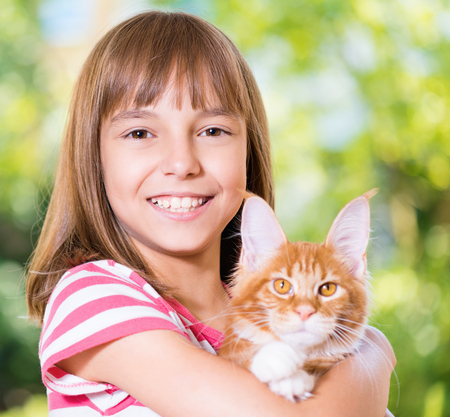 coon: Beautiful little girl holding cute red Maine Coon kitten Stock Photo