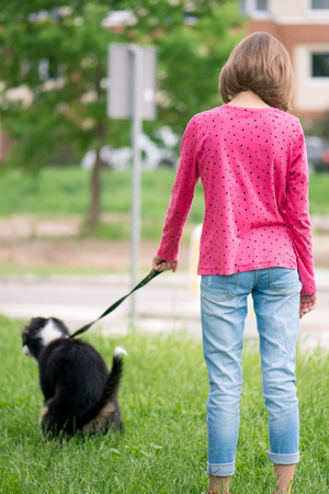 Cute teen girl playing with her new puppy Australian Shepherd dog, outdoors. Friendship and care concept.