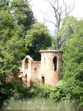 photo showing the ruins of the castle among the trees
