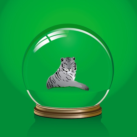 christal: vector illustration of white tiger in a glass bowl
