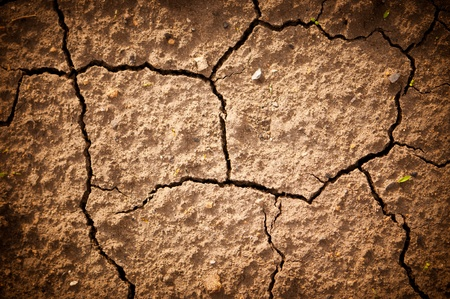lack of water: racked earth  in a dry terrain  The land is cracked due the lack of water   Stock Photo