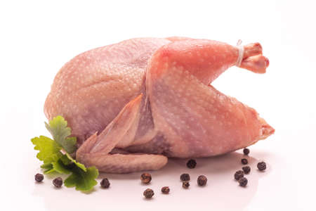 Raw plucked quail isolated on white background. Ecological poultry for cooking. Healthy eco-food. Close-up.