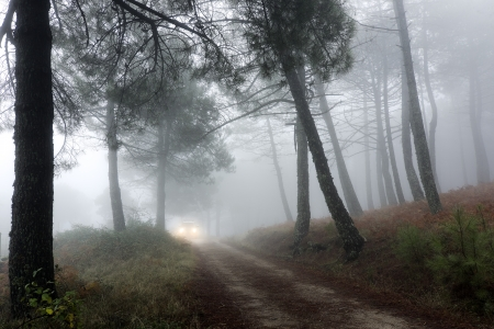 vehicle traveling along a forest road in a mountain of Madrid, Spain photo