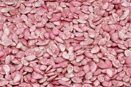살균제: 심은 부패를 방지하기 위해 살균제 살포 호박 씨앗
