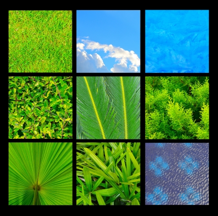 Collection of grass, leaves, sky and water texture background