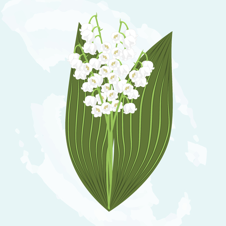 Vector clipart Flower May Lily. A hand-drawn image for insertion into a document, a website, a presentation, etc.