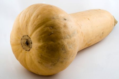 A butternut squash on a white background great for stews and soups.