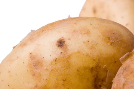 Raw Jersey Royal potatoes shot against a white background  Stock Photo