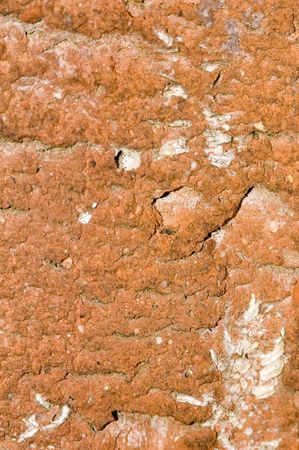 A background of a textured brick in closeup