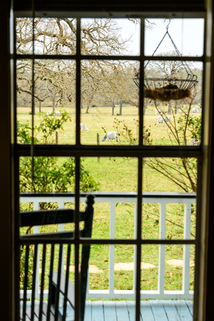 ranch house: View of a pasture with cows through ranch house window on a cloudy day in Texas Stock Photo