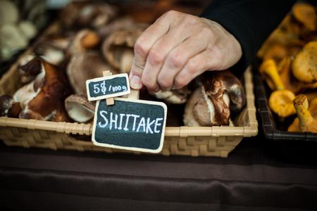 Hand putting a price sign on shiitake mushroom's basket, at farmer's market Banco de Imagens - 118628927