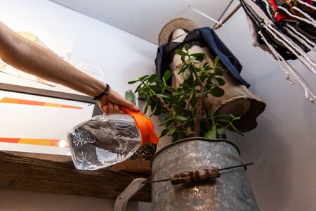 Hand of a girl watering a green plant, viewed from below, inside an ecological fashion store with mannequin and locally crafted garments.